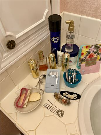 Bathroom Clean Out Lot