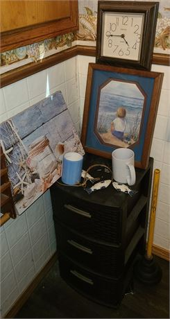 Bathroom Organizer / Plunger / Art