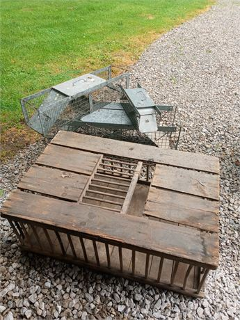 3 Animal traps and pheasant cage