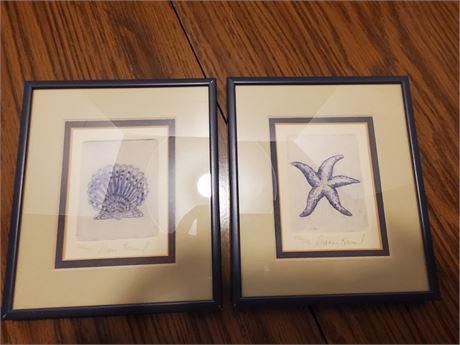 Dianne Krumel Etchings Starfish + Sea Shell