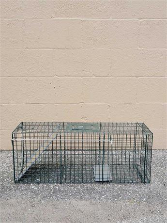 Raccoon Animal Trap by Advantek