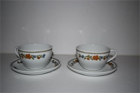 Pair of Bauscher Weiden teacup and saucer from Bavaria Germany