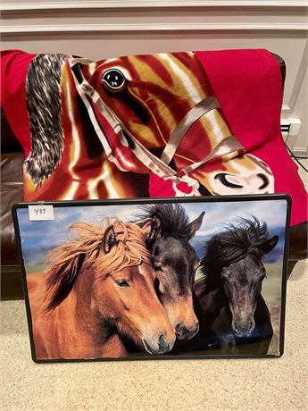 Horse Poster and Blanket Lot