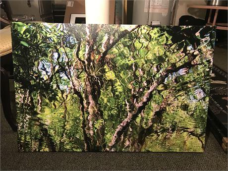 Photo on Canvas Art