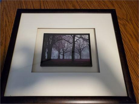 Shadowbox Framed Art Photo/Print