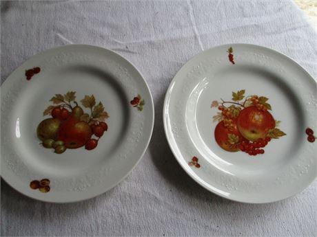 2 Matching Scherzer Bavarian Fine China Hand Painted Germany Plates