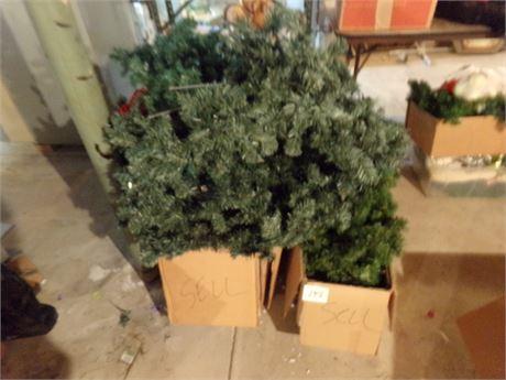 Christmas Trees Lot