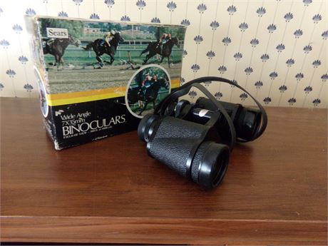 Wide Angle Sears Binocular