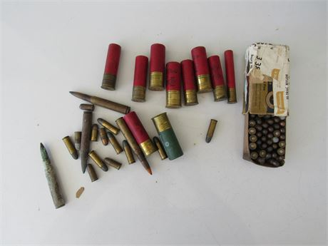 Shotgun Shells & bullets