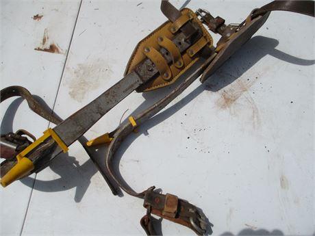Buckingham 4 Steel Tree Climber Spikes Lumberjack Spurs