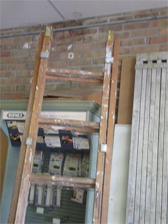 Professional 16' Wood Extension Ladder & 16' Metal Walk Board