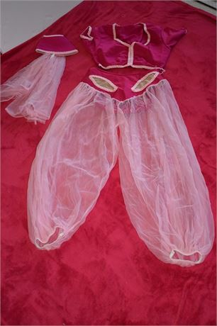 I Dream of Jeannie Costume-Teen/Small adult